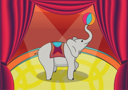 clever elephant plays with ball at circus