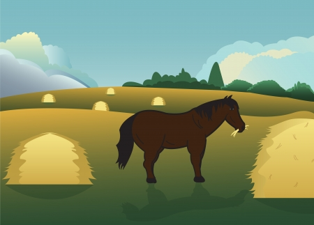 tranquil horse eats hay in the meadow
