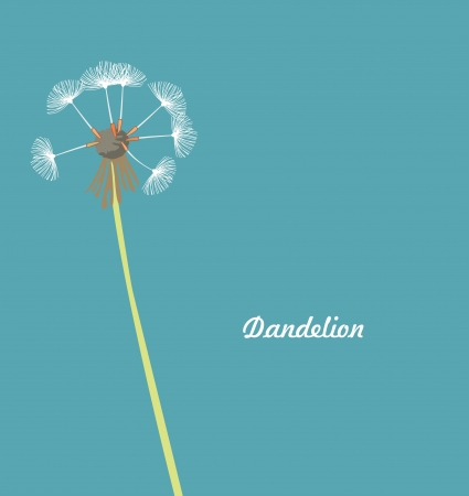 overblown: Dandelion against blue  background, abstract vector art illustration Illustration