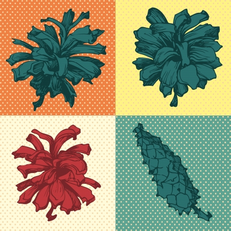 set of spruce and pine cones on a bright background Vector