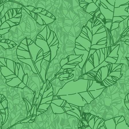 green  pattern with leaf,summer leaf background Banco de Imagens - 14315515