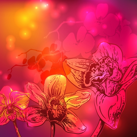 Rainbow orchid flowers, stars and bright background photo