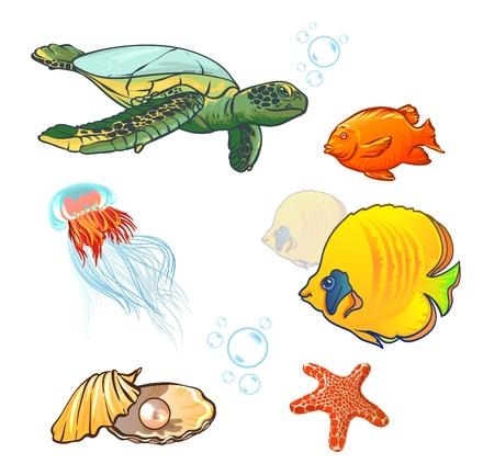 underwater world with marine animals. fish, shell, jellyfish Stock Vector - 19258290