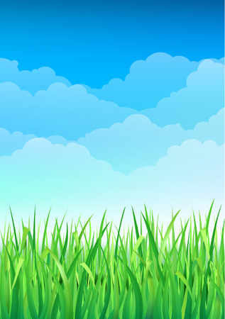 Green Grass and Blue Sky Background. Happy Summer Nature Illustration. Spring nature background with grass and blue sky in the back