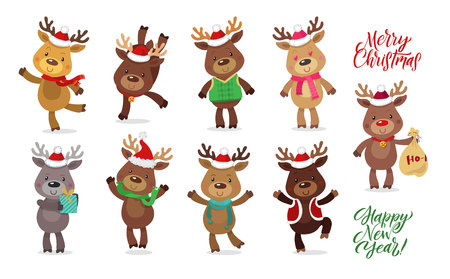 Santas Reindeer Set. Vector illustrations of reindeer isolated on white background
