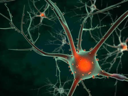 Representación 3D de las neuronas en el cerebro Foto de archivo
