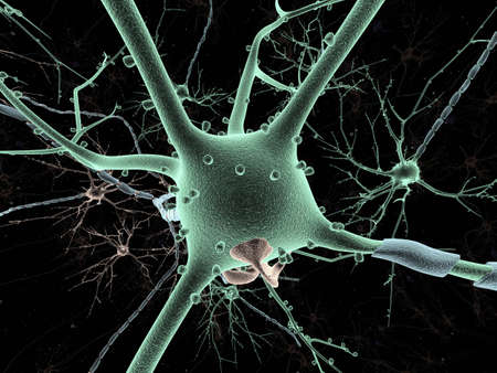 impulse: Neuron lang-shot