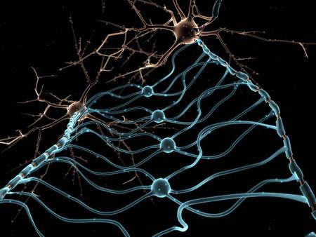zenuwcel: Neuron Oligodendrocyten Stockfoto