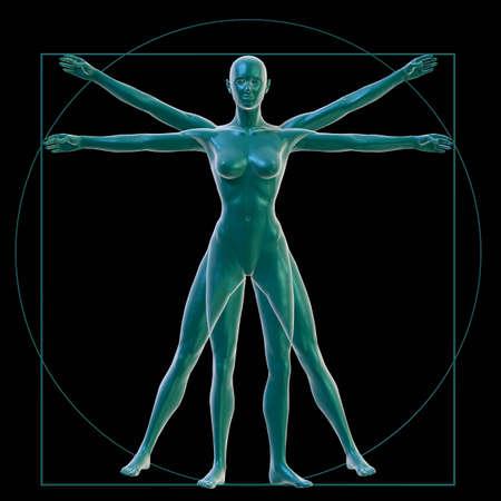 cuerpo hombre: La mujer de Vitrubio sobre negro