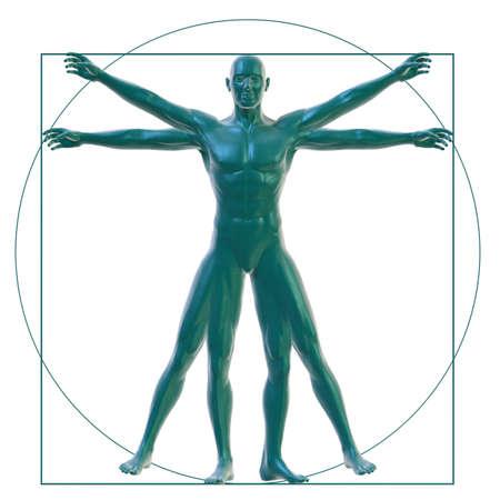 uomo vitruviano: Uomo vitruviano su bianco Archivio Fotografico