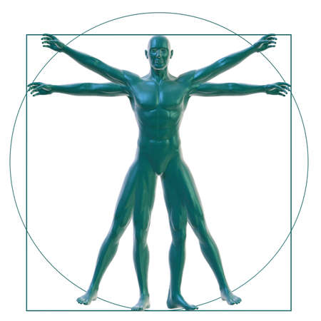 Vitruvian man on white photo