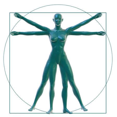 uomo vitruviano: Donna vitruviano su bianco