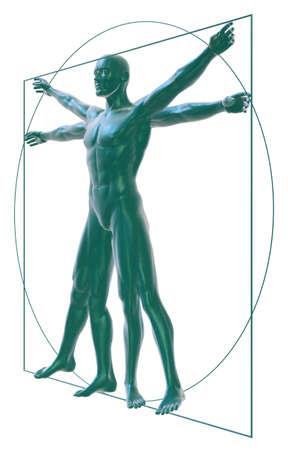 vitruvian man: El hombre de Vitruvio en el blanco de tres cuartos