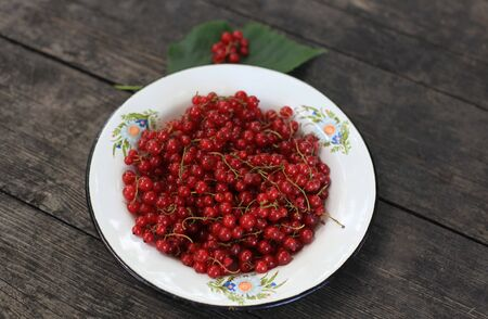 Red currant on a metal flower-decorated plate on wooden table  photo