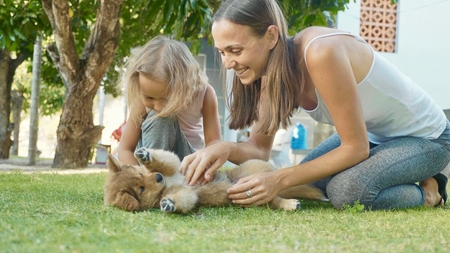 Mother and child playing with puppy on a warm summer day outdoor Stock Photo