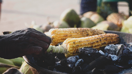 Sweet corn cob roasting on a coal and street vendor turning it.