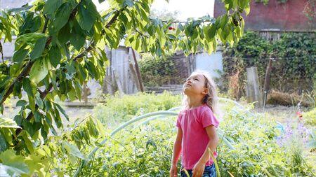 Happy little girl want eat cherry in the garden.
