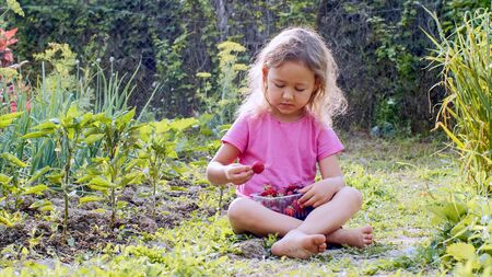 Little girl is eating strawberry and looking at camera sitting on the grass.