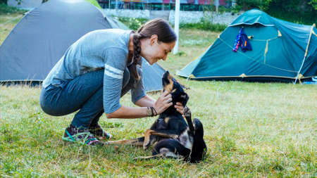 Woman is gently stroking mongrel dog at camping
