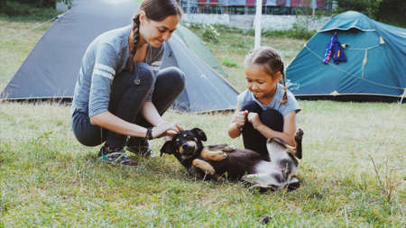 Mother with daughter is gently stroking mongrel dog at camping