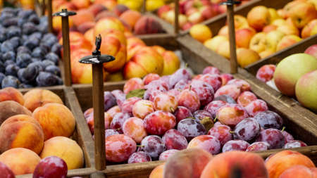 Variety fruits on grocery store shelves 免版税图像