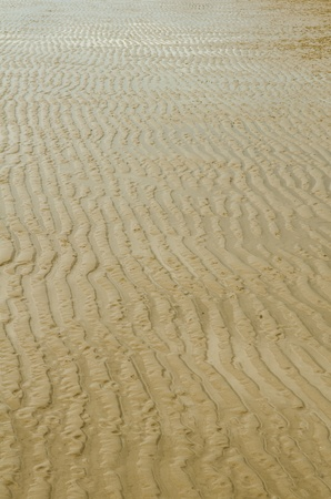 Tracks in the sand caused by the rise and fall of the sea caused beautiful. Stock Photo