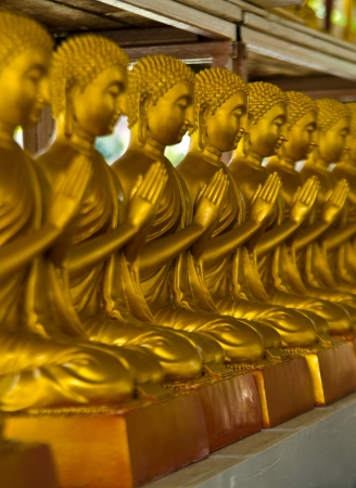 golden buddha in the temple at pratumtanee thailand