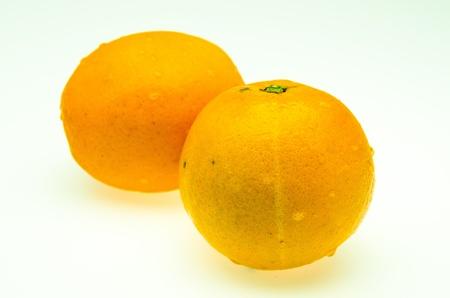 Photos Orange on a white background.