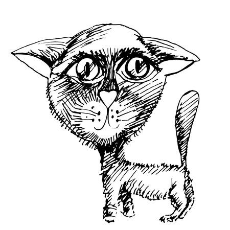 cat chalk black graphic illustration Vector