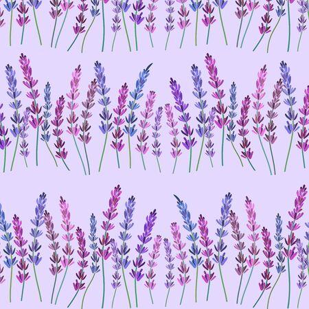 Lavender pattern purple vector illustration Vector