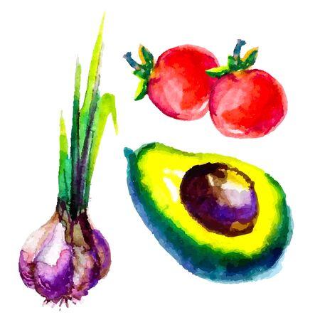 watercolor vegetables bio vector illustration Vector