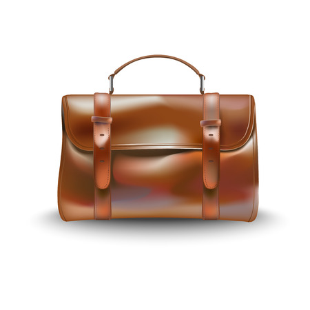 personable: diplomatic bag leather vector illustration