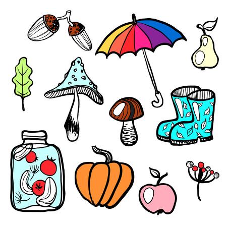 autumn colour: autumn isolated colour vector illustration