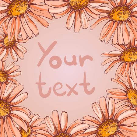 daisy flower frame vector illustration