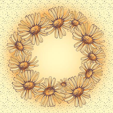 daisy flower wreath vector illustration