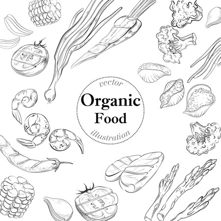 fresh food: Organic fresh  food banner. Linear  vector illustration.