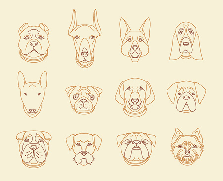 breeds: Popular breeds of dogs. 12 linear icons isolated.