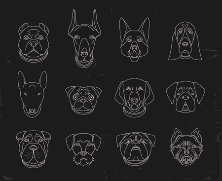breeds: Popular breeds of dogs. 12 linear icons isolated on black.