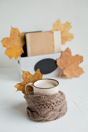 A cup of pumpkin latte and woolen scarf on white background. Decorated with fresh red pumpkins, dry maple leaves. Autumn season, comfort concept
