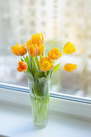 Frühlings-Orangentulpen in einer Vase in der Nähe des Fensters morgens.