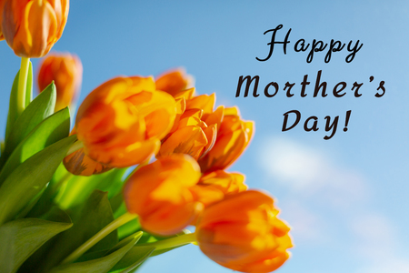 Spring orange tulips in a bouquete on blue sky background. Text Happy Mother's Day.