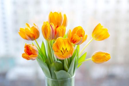 Spring tulips  in a vase near the window Standard-Bild