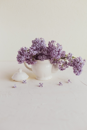 Purple spring lilac flowers still life on white background in the morning. Small tea pot and a cup are full of purple flowers.