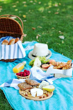 Summer picnic on the  blue plaid  in the morning. Some snacks, fresh grapes and cheece and bread are on the wooden plate. 版權商用圖片