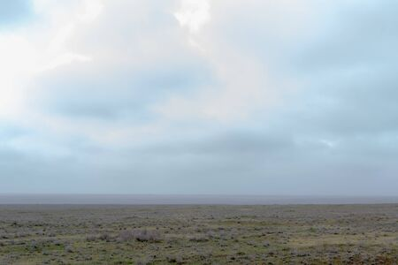 Landscape of wild Kalmyk steppe in a fog in spring early morning.