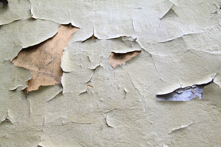 crackles: paint wall background or texture for you site