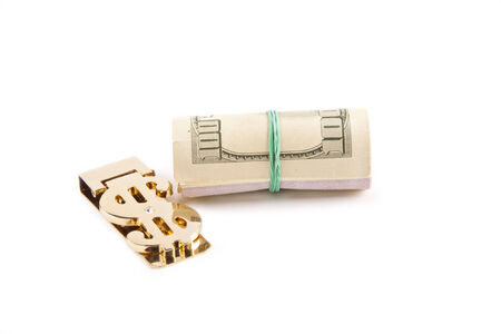 Rolled up paper dollar currency finance savings isolated