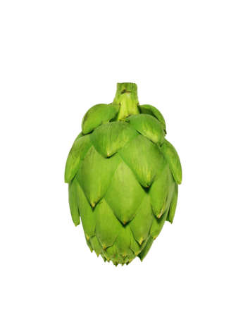 Ripe green artichoke vegetable isolated on white  photo