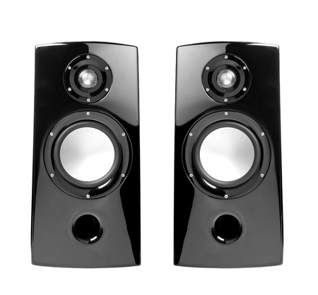 acoustic systems: black speakers with sphere