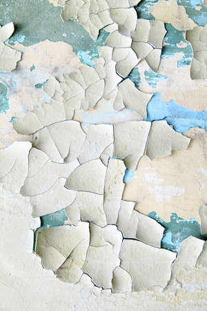 crackles: Old paint peeling from wall close up